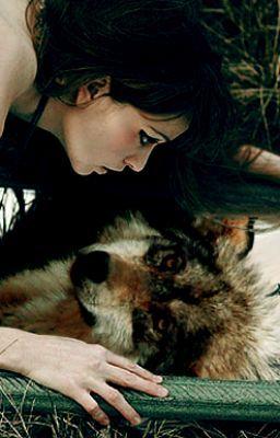 bella-wolf2