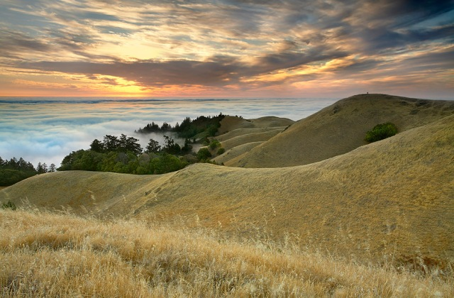 The Photographers - Marin County, California
