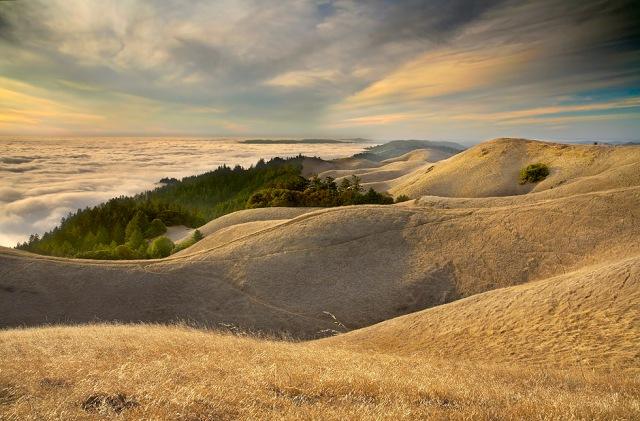Undulations - Mt. Tamalpais, Marin County, California