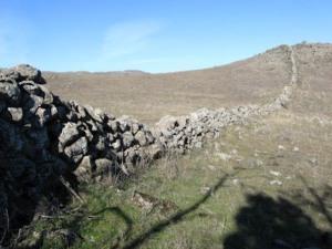 walls4