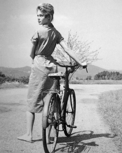 bicycle14