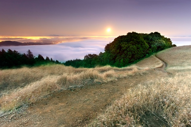 Once per month during a full moonrise at sunset, rangers on Mt. Tamalpais, just north of San Francisco have a moonlight walk. This is the only chance to see this place at night because the park closes at sunset. It was hot, dry and windy above the cold fog. You can literally walk from the cold fog to the hot winds and back again in just a few minutes!