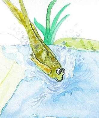 faulknerfrog
