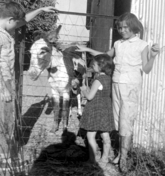 Prescos 1958 Greg, Vicki and Christine on farm